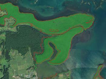Une nouvelle cartographie des mangroves françaises